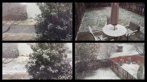 10am ET, 26 Nov 2014 Thanksgiving Eve Snow