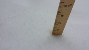"""5"""" of Snow - not bad!"""