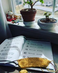 Photo: A sunny window with plants, a Korean Hangul workbook, and knitting in progress with yellow cotton yarn.