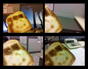 Toast striking poses at my workspace.