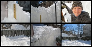 10am US EST -  Back Yard Shoveling - Sunday, 24 Jan 2016